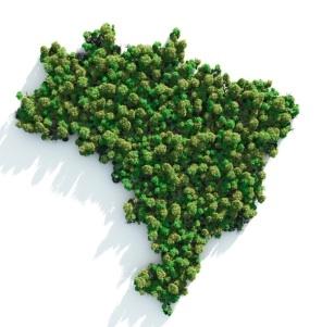 greenbrazil
