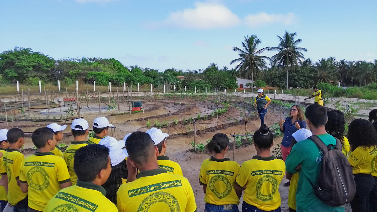expert agronomists demonstrated how to care for crops